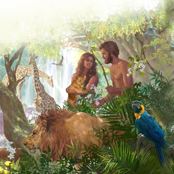 Gjenomi njerëzor, humbja e vitaminës C prej mëkatit të Evës dhe Adamit
